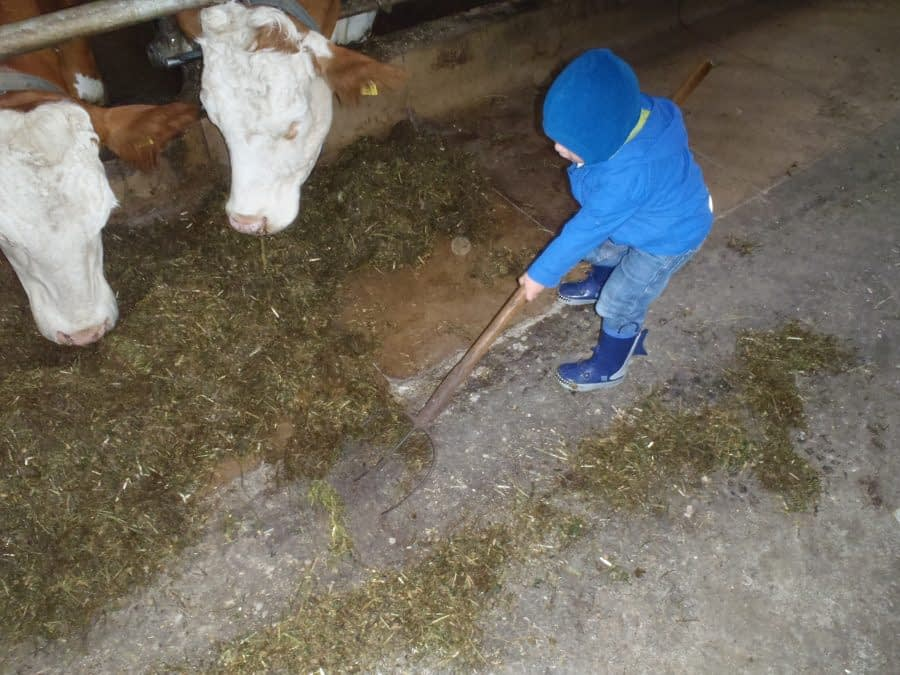 Child on Farm in Europe